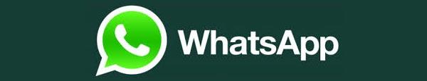 Mandaci un Messaggio su WhatsApp
